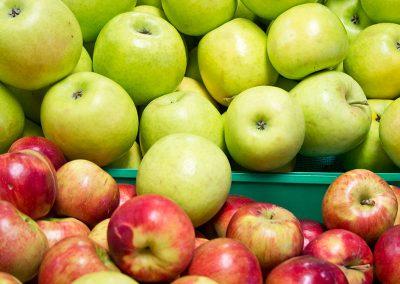 Homegrown-Apples-ENV-2014_04