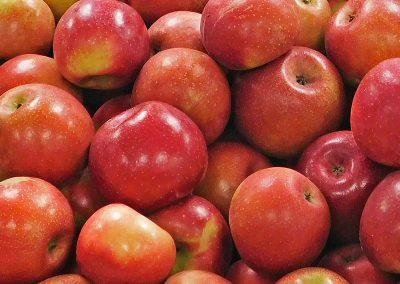 Rome-Apples-2