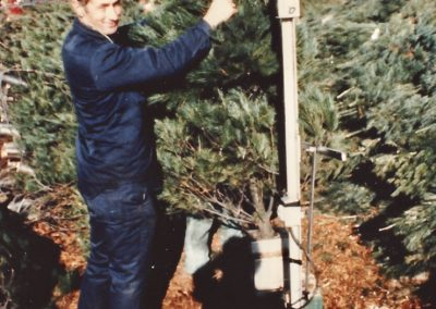 Tim Trax working with Christmas trees 1994